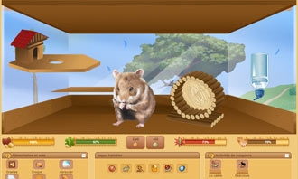 HamsterStory - Your new rodent